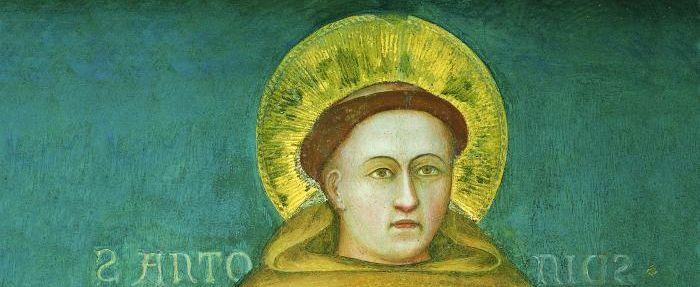 Aus der Schule Giottos stammt dieses Fresko von 1326. Es zeigt den heiligen Antonius von Padua mit einem Buch, vermutlich der Bibel, in der Hand. - C. Pagliarani, Archiv MSA